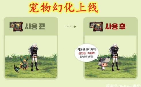DNF韩服3.14版本上线宠物幻化道具,幻化整体效果不错