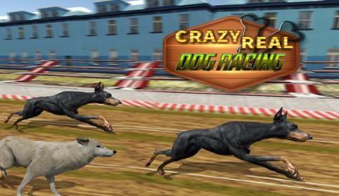 真正的狗比賽破解版下載趣味比賽手游