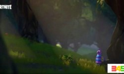 堡垒之夜羊驼宝箱位置一览