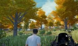 刺激战场野餐枫树林在什么位置
