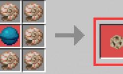 我的世界鸚鵡螺殼有什么用 鸚鵡螺殼使用的技巧